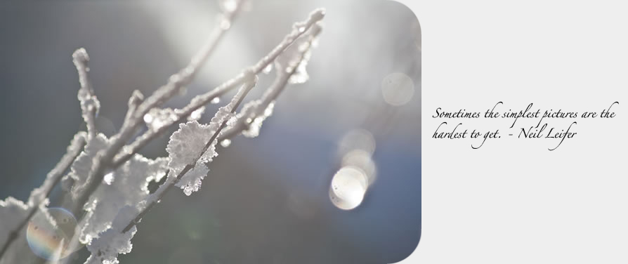 winter600px_quote